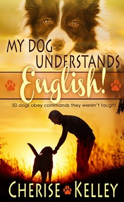 MY DOG UNDERSTANDS ENGLISH