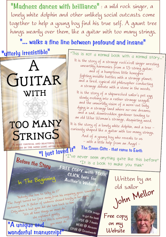 A Guitar With Too Many Strings